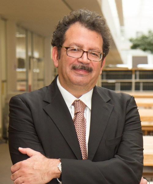 Professor Chibli Mallat